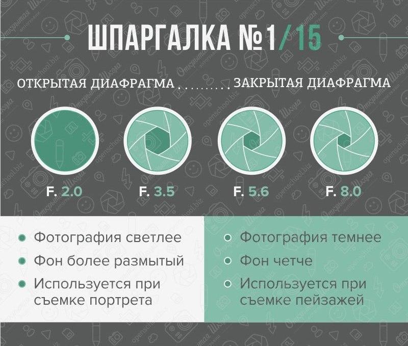 fotoshpargalka-1