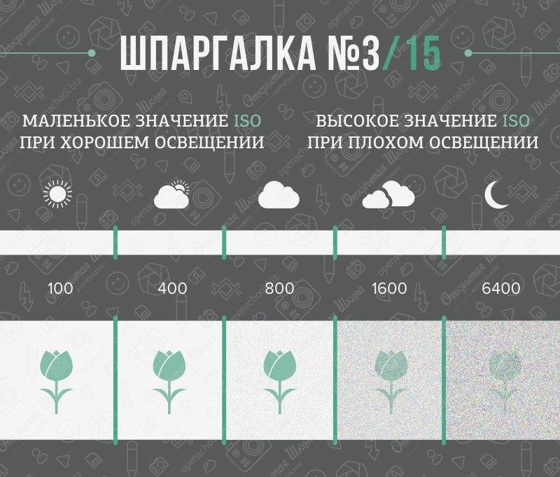 fotoshpargalka-3